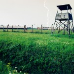 Auschwicz Lightning Strike