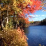 New Hampshire Pond - Fall '09